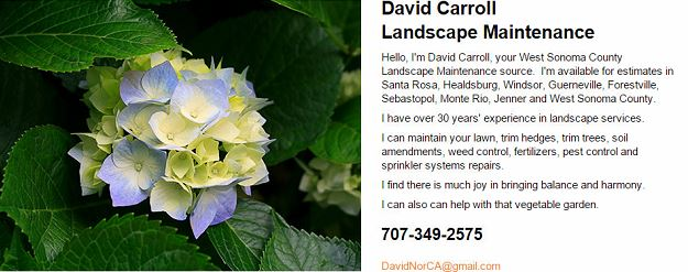 David Carroll was the landscape designer for Saratoga Springs for more than 20 years!